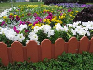 Садовые пластиковые ленты